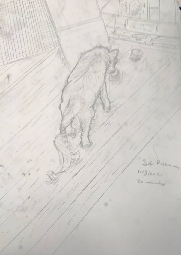Sol Robinson drawing home